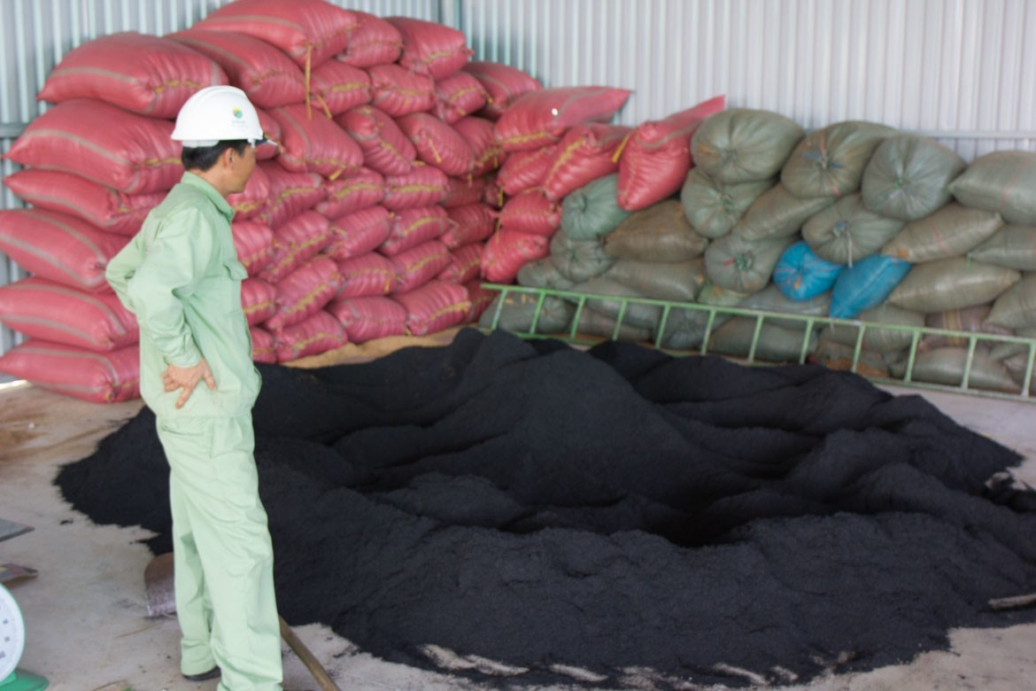small biochar pile at EcoFarm