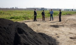 biochar pile at the farm in Manteca