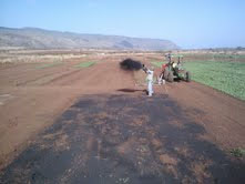 Biochar Field Trial on Oahu with Pacific Biodiesel