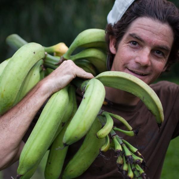 Josiah Hunt _ Carrying Bananas