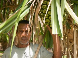 Atoll Growing; biochar from coconut husks for better toilets and bigger bananas