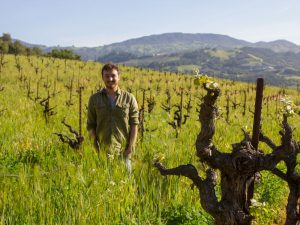 """Biochar: the Vineyard's Next Big Thing""_ article in Wine-Searcher"