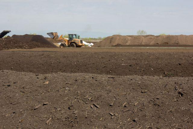 Biochar compost
