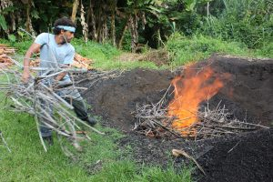 Feeding wood into an open pit biochar fire