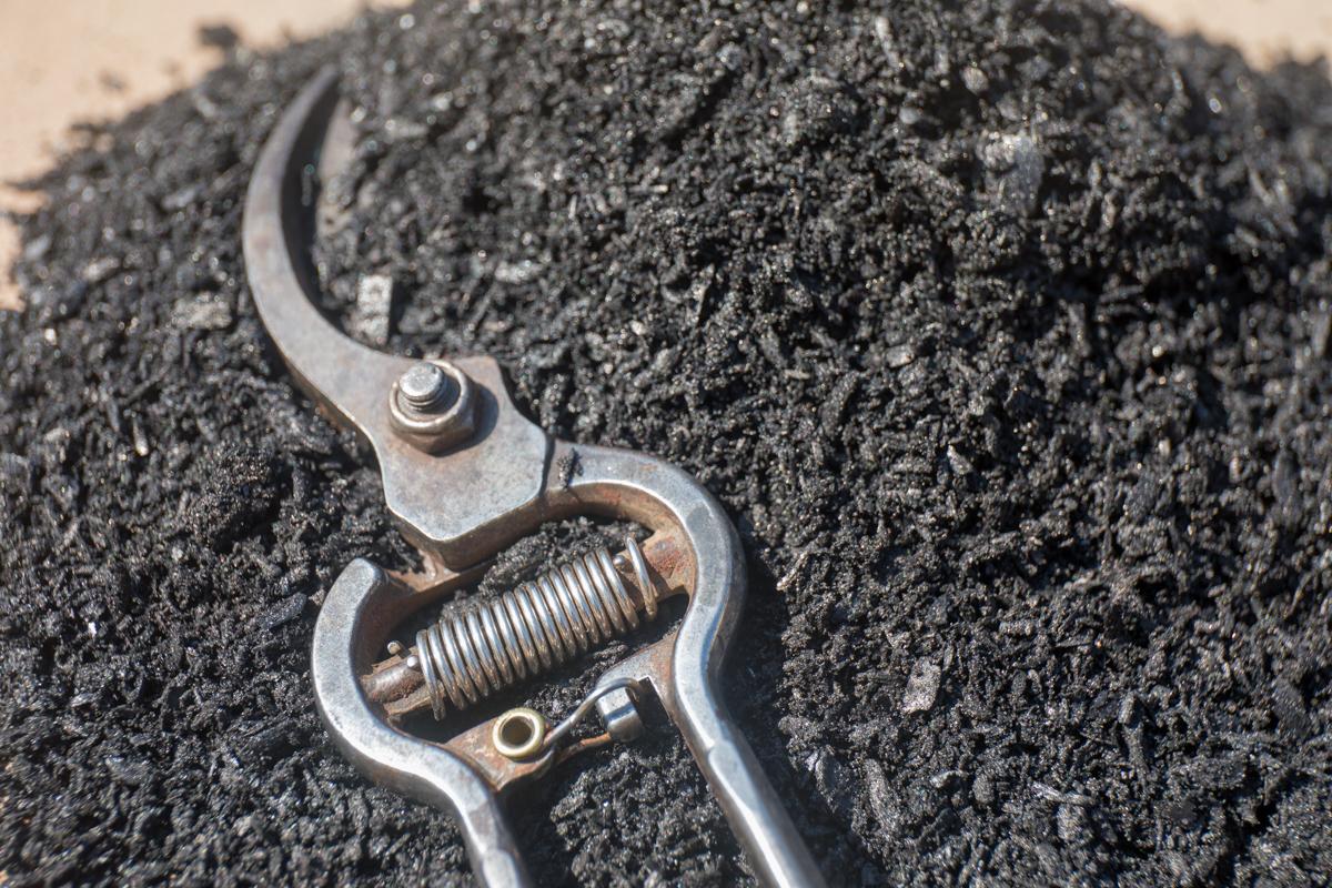 Biochar: Blacklite Pure, low ash