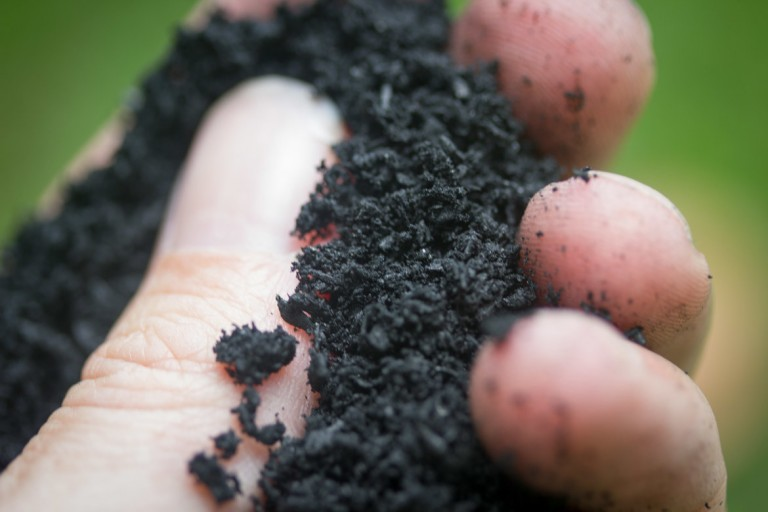 blacklite biochar in hand