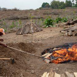 open pit biochar production