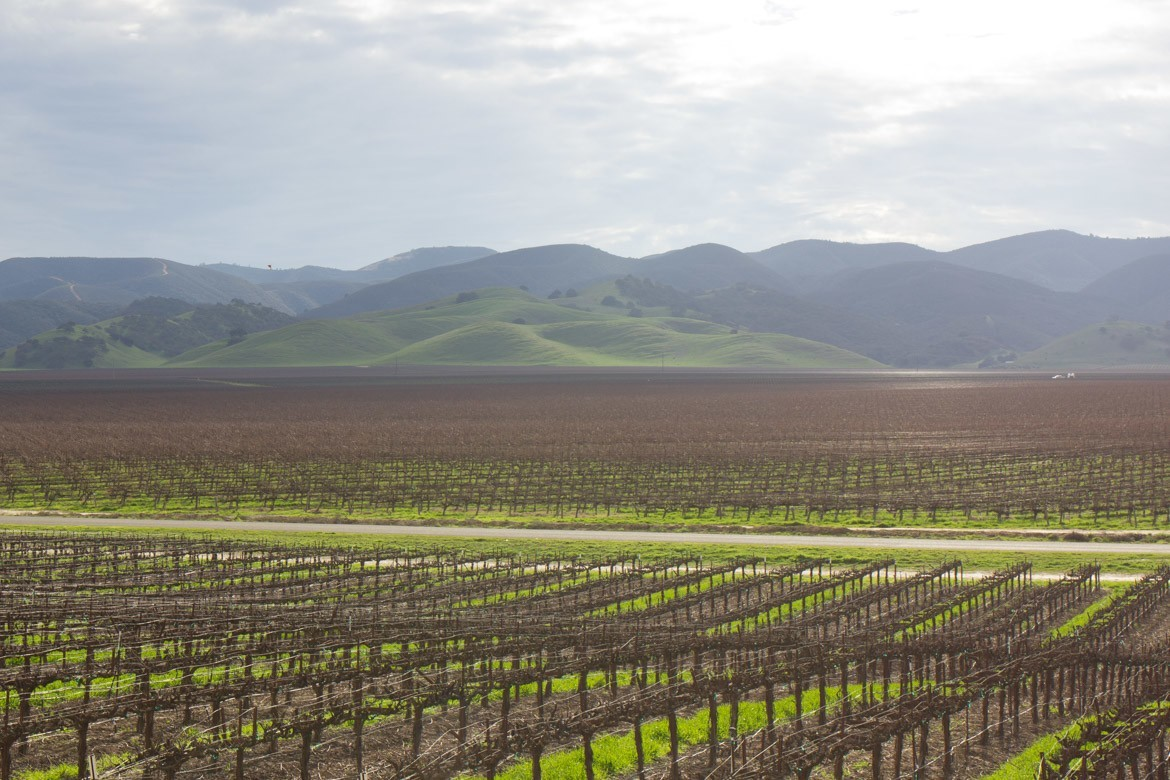 A farm in California, where pyrogenic organic matter will hopefully be used with more intention