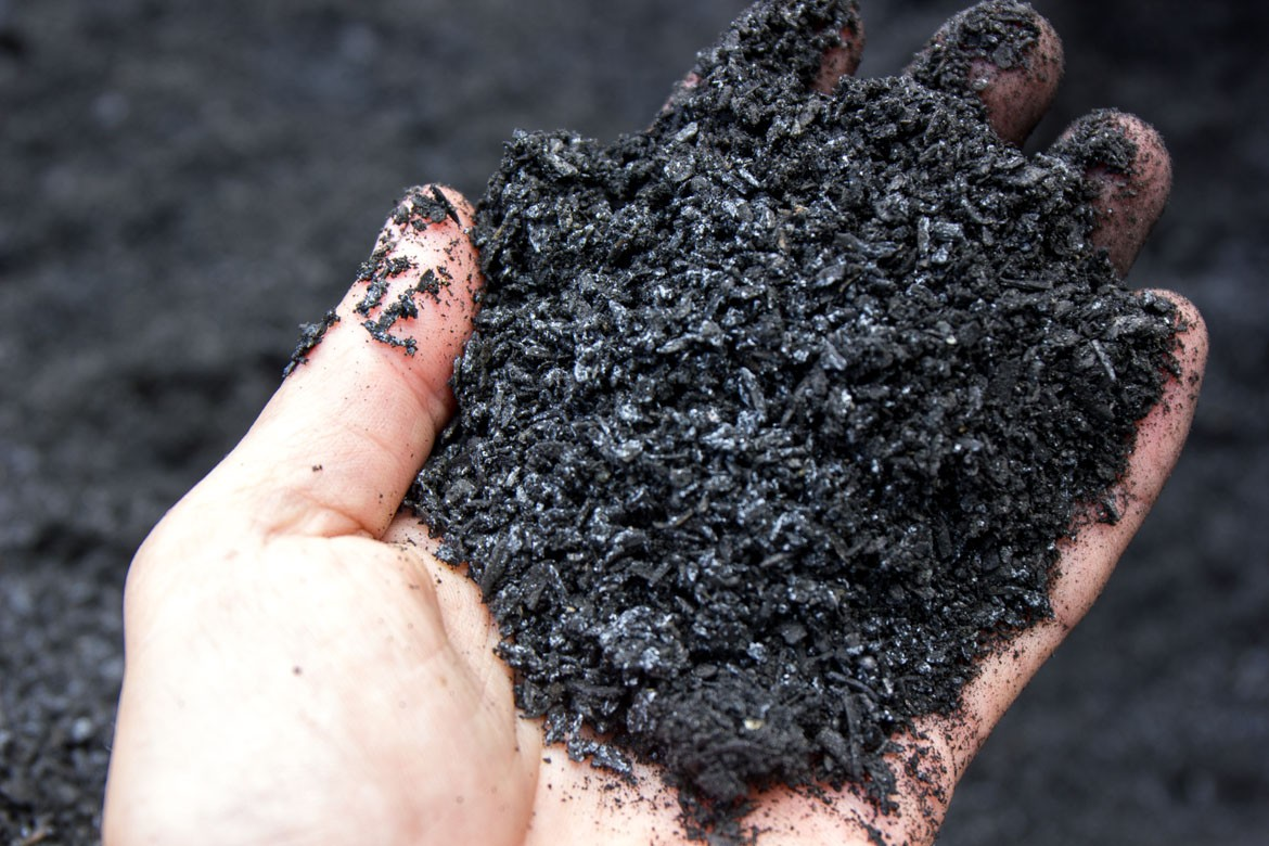 biologically activated biochar