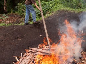 How to Make Biochar With Only a Match