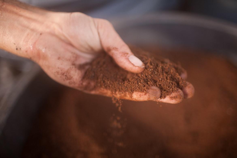biochar fertilizer