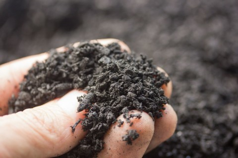 California Biochar for Sale - Bulk Delivery - Best Quality, Lowest Price