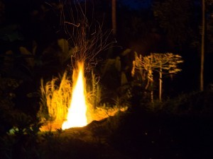 Hurricanes and Hot Lava – Biochar in a State of Emergency