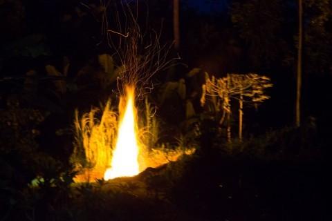 Hurricane Issele windfall biochar fire
